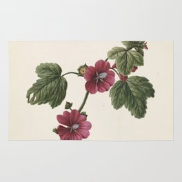 M. de Gijselaar - Twig with purple flowers (1830) Rug