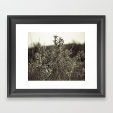 Fall Textures Framed Art Print