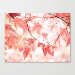 Seeing Autumn Thro' Rose-Colored Glasses Canvas Print