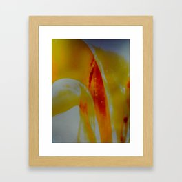 untitled #0012 (red three) Framed Art Print