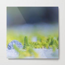 Nature & Simplicity Metal Print