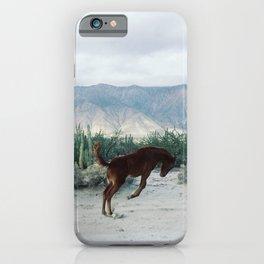 Bucking in Baja iPhone Case