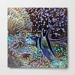 Reef and Fish Metal Print