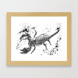 Scorpion Framed Art Print