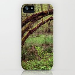 Arch of Jericho iPhone Case