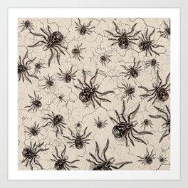 Crab Spider  Khaos Art Print