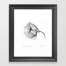 the neighbour's poppy Framed Art Print