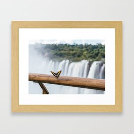 Butterfly over Iguazu Falls, Argentina Framed Art Print