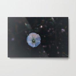 Purple Flower in the Woods Metal Print