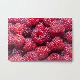 red raspberry   close-up Metal Print