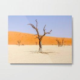 Deadvlei Namibia Desert Dead Trees Metal Print