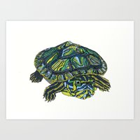 turtle Art Prints featuring Turtle by Aina Serratosa