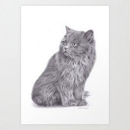 Kitty graphite pencil illustration Art Print