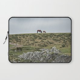 Asturcon, Asturian pony Laptop Sleeve