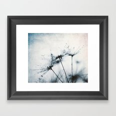 dandelion blue IV Framed Art Print