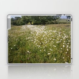 Path of Daisies Laptop & iPad Skin