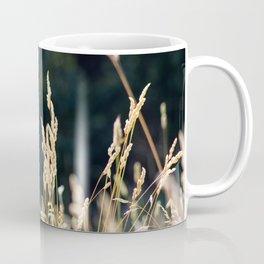 Wonder Coffee Mug