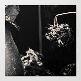Dead Flowers and Glass #2 Canvas Print