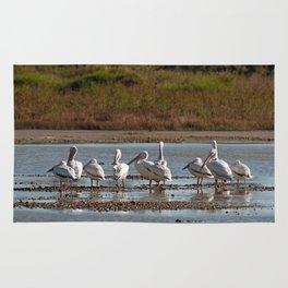 The Birds of Cutler Bay Wetlands Rug