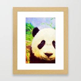 Panda - for iphone Framed Art Print