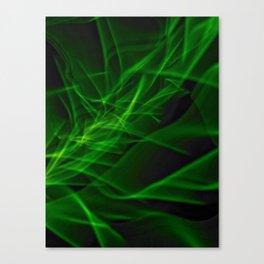 Glowstick Light painting Canvas Print