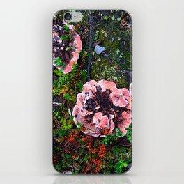 Tundra I iPhone Skin