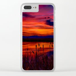 Ninepipe NWR Clear iPhone Case