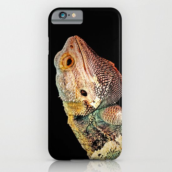 BEARDED DRAGON iPhone & iPod Case
