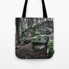 Algonquin Park, Ontario Tote Bag