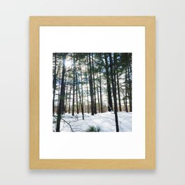 Winter Woods1 Framed Art Print