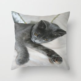 Cute Grey Kitten Relaxing  Throw Pillow