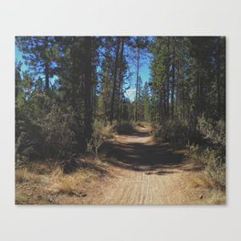 Benham Falls Trail Canvas Print