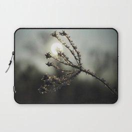 Winter sun Laptop Sleeve