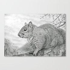 The Grey Peril Canvas Print