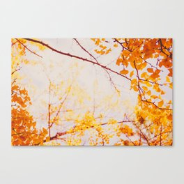 Yellow Madness Canvas Print