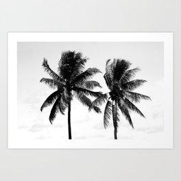 Tropical Darkroom #271 Art Print