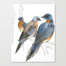 Passenger Pigeons Canvas Print
