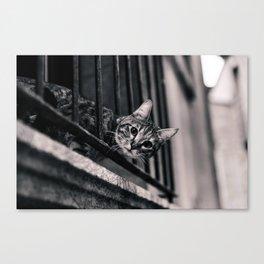 Hi there Canvas Print