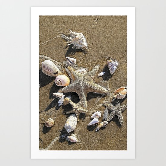 Sun, Sea, Sand, Shells, Star, Summer Art Print