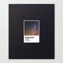 PANTONE SERIES – STARGAZING Canvas Print