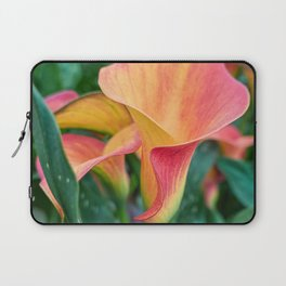 colored calla lily in the garden Laptop Sleeve