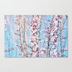 Pretty Cherry Blossom Floral Canvas Print