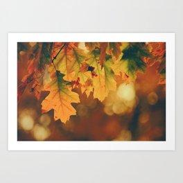 Autumn Leaf (Color) Art Print