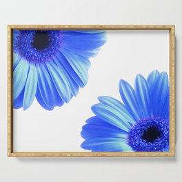 Blue Gerbera Flowers Serving Tray