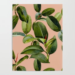 Botanical Collection 01 Poster