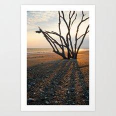 Botany Bay 3 Art Print