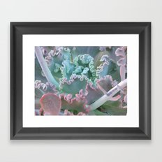 Succulent in the Sand Framed Art Print