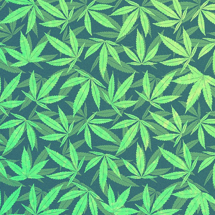 HIGH TYPO! Cannabis / Hemp / 420 / Marijuana  - Pattern Leggings