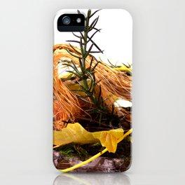 Autumn feelings iPhone Case