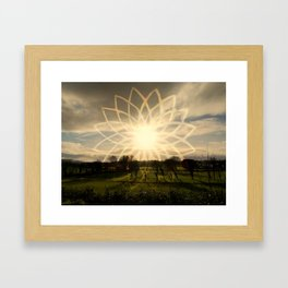 """Lotus Field"" Framed Art Print"